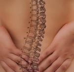 La manutenzione della colonna vertebrale.