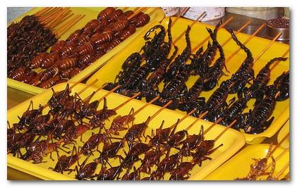 insetti dolci