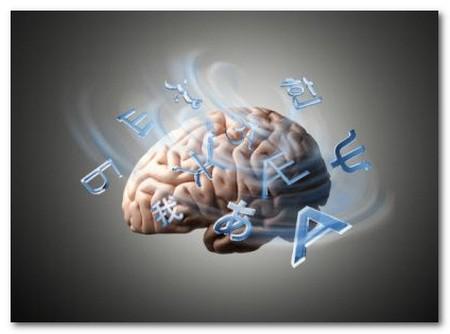 cervello4